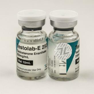 testolab-e 250