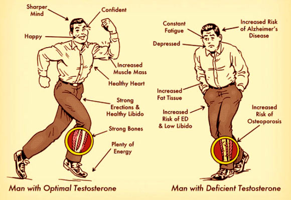 Testosterone Levels in a Man